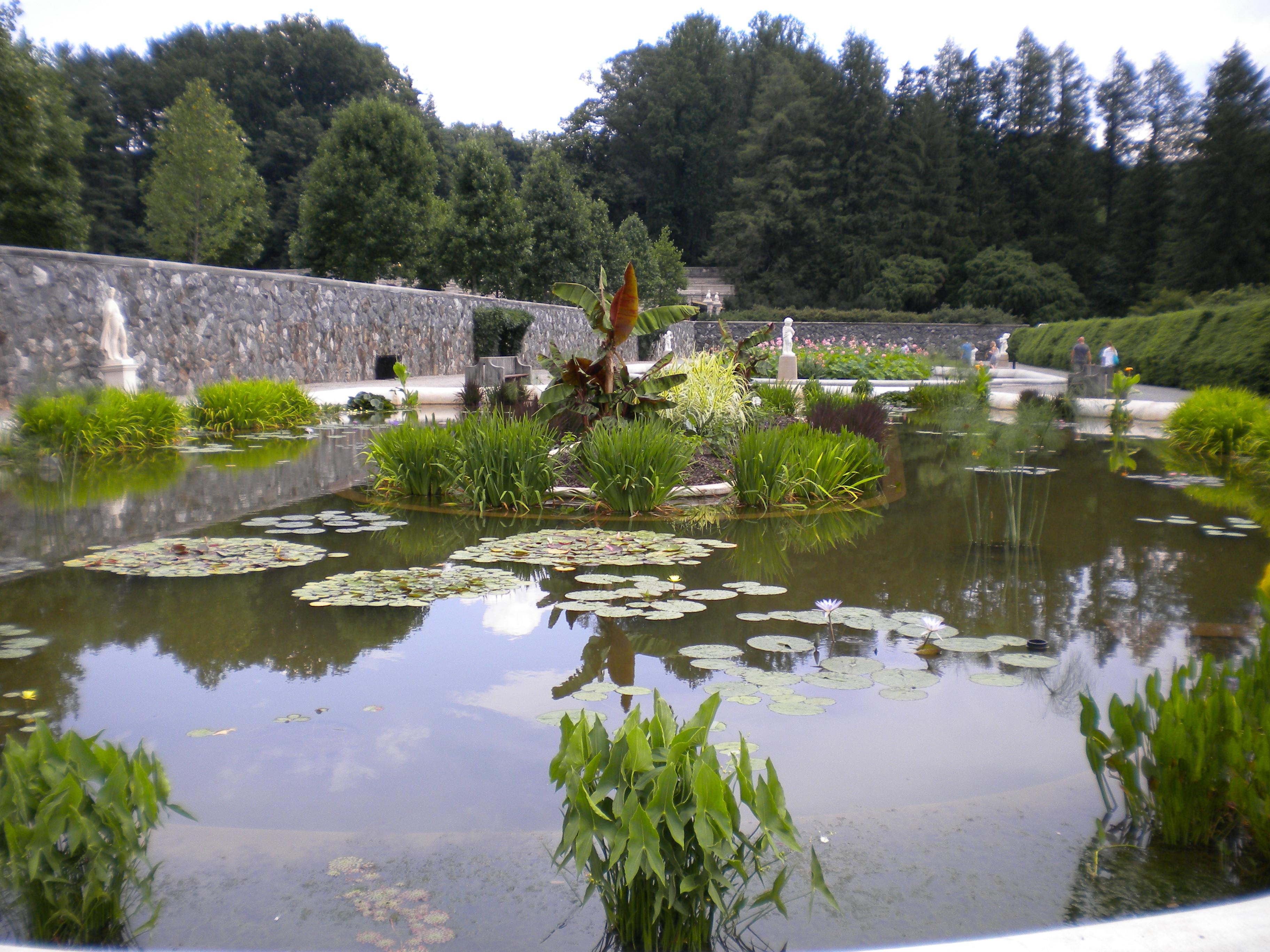 Httpbuddhistsbuddhist symbolsthe meaning of the lotus renewal of sacred space izmirmasajfo